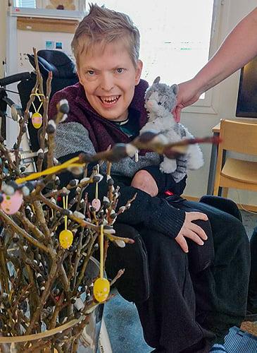 Antti-Jussi ja kissat